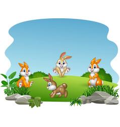 cartoon happy rabbits collection vector image