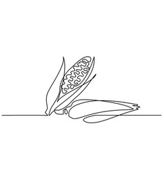 continuous one line draw vegetables two corn vector image
