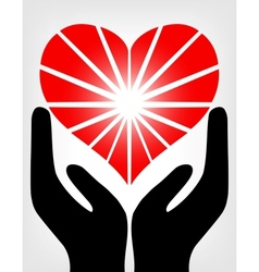 image hands holding red heart vector image
