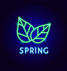 spring neon label vector image