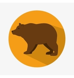 Bear animal design vector image vector image
