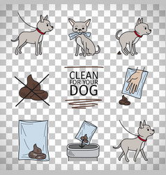 clean up after your dog information vector image
