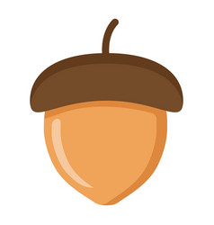 acorn flat icon nut and food graphics vector image