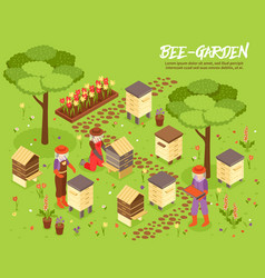 Beegarden bee yard isometric vector