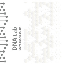 dna structure double helix on white background vector image