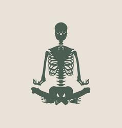 halloween human skeleton vector image