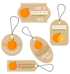 labels with various fruitsfor orange vector image