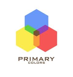 Primary color logo design template vector