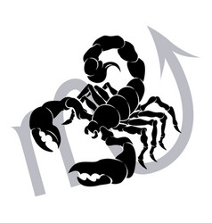 scorpio zodiac horoscope astrology sign vector image
