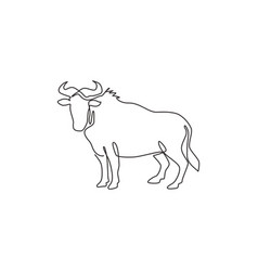 single continuous line drawing sturdy vector image