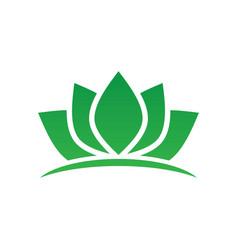 green lotus spa meditation logo vector image