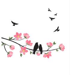 spring sakura blossom vector image
