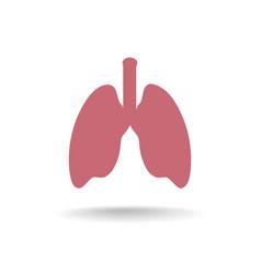 lung anatomy icon medical human organ sign vector image