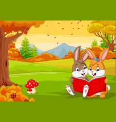 cartoon couples rabbits reading a book vector image