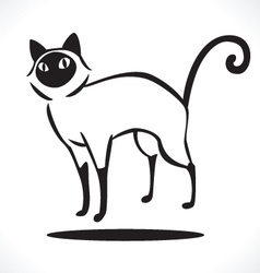 Cat 4 vector