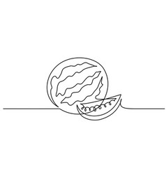 continuous one line draw watermelon berry fruit vector image
