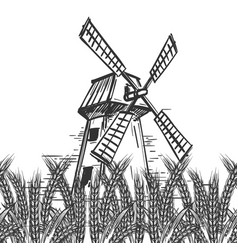 Farm landscape with mill and wheat vector