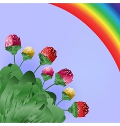 Flowers and rainbow Spring bright background vector