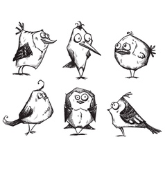 Funny cartoon birds hand drawn vector