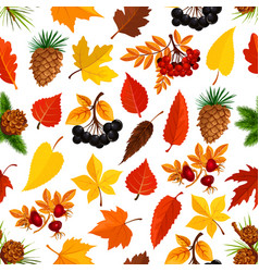 seamless autumn pattern background fall nature vector image