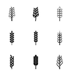 wheat ears icon set simple style vector image