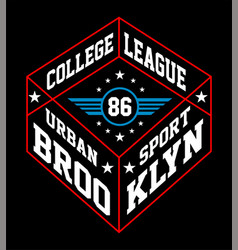 brooklyn urban sport vector image