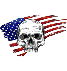 draw of skull and flag usa vector image