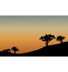 Landscape at sunset with trees vector image