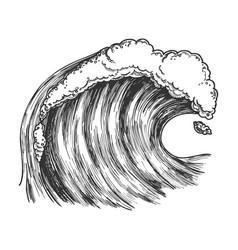 rushing foamy tropical ocean marine wave vector image