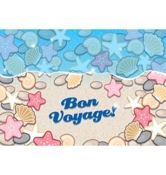Seashore with shells and starfish vector