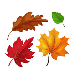 Sketch autumn leaves set vector