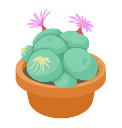 succulent icon cartoon style vector image