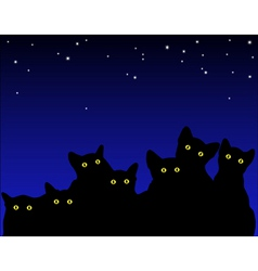 cats eyes vector image vector image