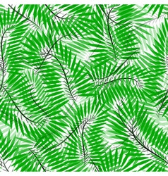 Seamless of Chamaedorea leaves vector image vector image