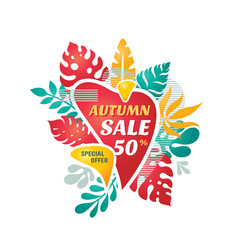 autumn season sale discount - concept banner vector image