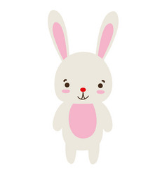 Colorful cute and happy rabbit wild animal vector