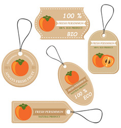 labels with various fruitsfor persimmors vector image