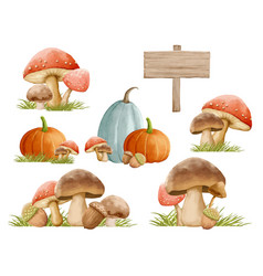 Mushrooms autumn set with grass in watercolor vector