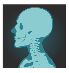 x-ray shot skull human body head and neck vector image