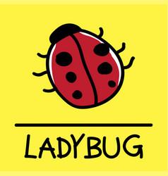 ladybug hand-drawn style vector image vector image