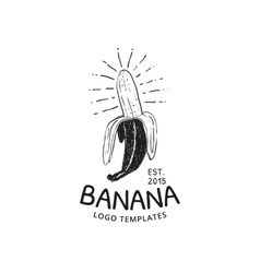 Banana logo vector image vector image