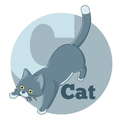 ABC Cartoon Cat3 vector image