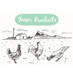 Drawn range chicken farm fresh meat sketch vector
