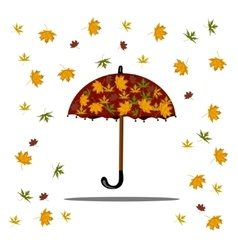 Falling autumn leaves and red umbrella vector image