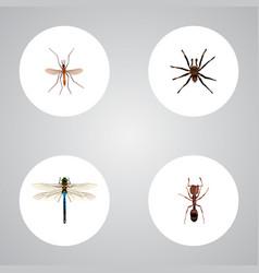 Realistic gnat damselfly arachnid and other vector