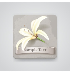 Realistic lily flower icon vector