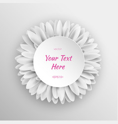 white gerbera flower template vector image