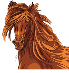 Beautiful red horse with long mane vector