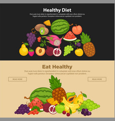 fresh farm fruits berries healthy organic diet vector image vector image