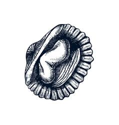 cooked cockle shells edible marine molluscs shel vector image